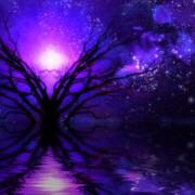 Akashic Infusion Healing Series